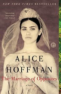 the-marriage-of-opposites-alice-hoffman